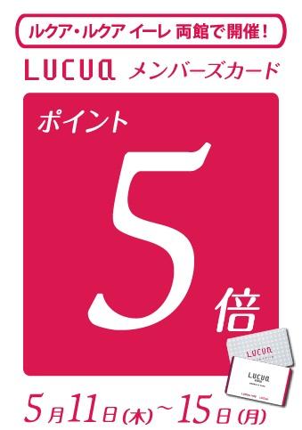 B5_POP_5倍PUP【201605】
