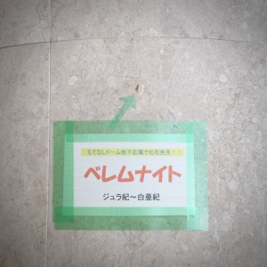 IMG-3706